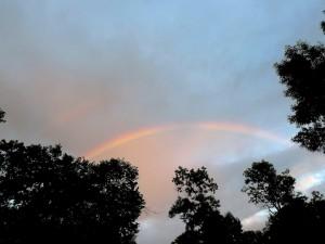 rainbow 8/4/12